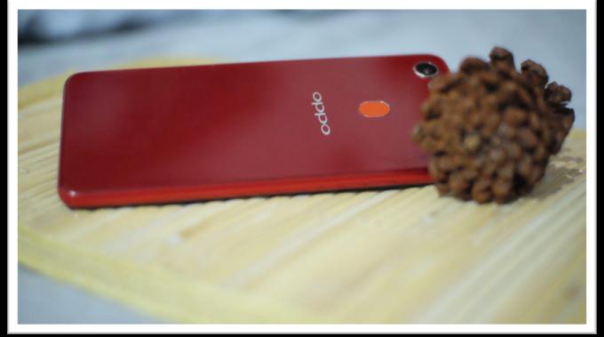 Liburan Makin Asik dengan Selfie dan Foto Pake OPPO F7