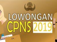 Inilah Informasi Penerimaan Calon Pegawai Negeri Sipil (CPNS) Tahun 2019